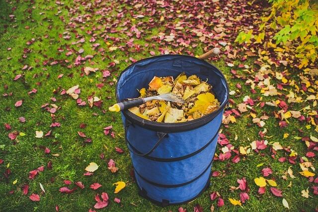Shravaka entreprise de ramassage de feuilles à Genève