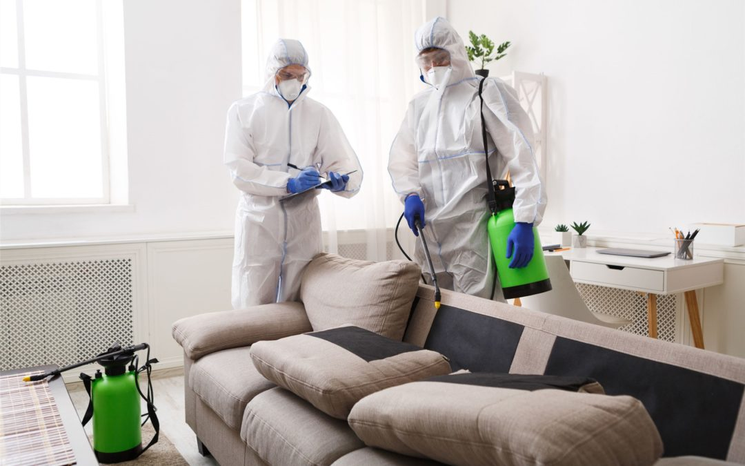 Cleaning against covid 19 corona virus with a cleaning company