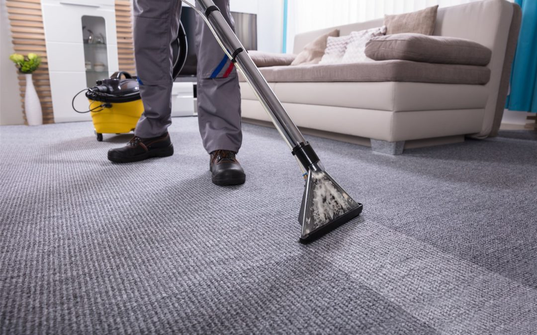 The best ways to get a spotless carpet without a steam cleaner